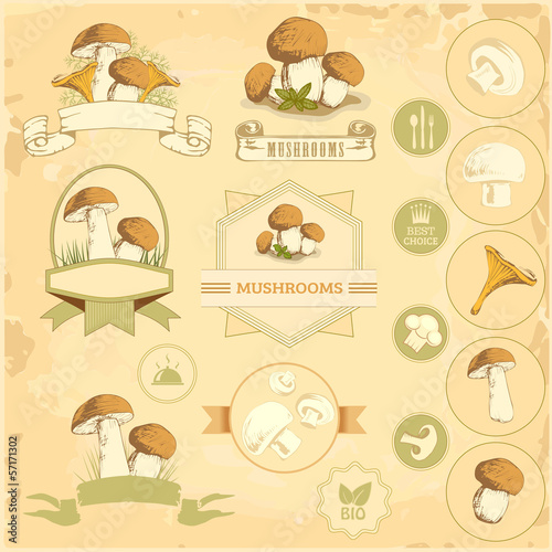 mushrooms, vegetables labels, food product packaging design