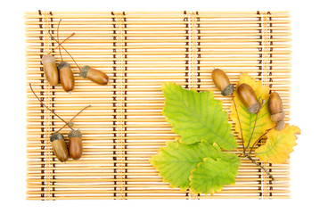 leaves of oak acorns on a mat from straw