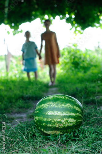 Watermelon is on the trail