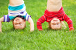 Happy children standing upside down on grass.