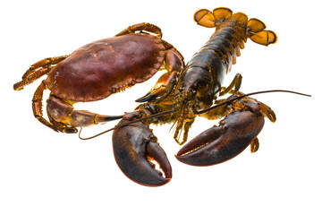 Raw Lobster and Crab