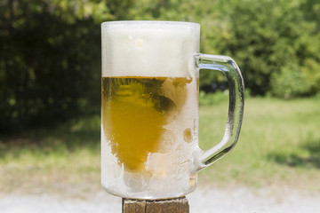 Cold beer in a chilled mug