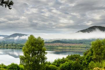 Scottish Mist