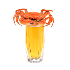 Boiled crab on glass of beer isolated on white