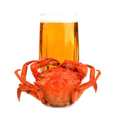 Boiled crab and glass of beer isolated on white