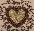 Heart from green and brown coffee beans on burlap background