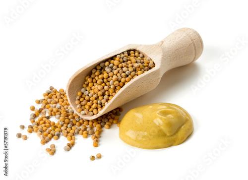 mustard - 57191379