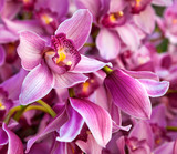 Purples bouquet of orchids. Floral pattern.