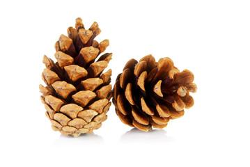 Two pine scones