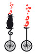 cat and birds on bicycle, vector