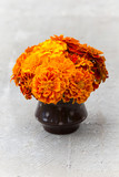 Orange marigold flowers in a vase with polka dot