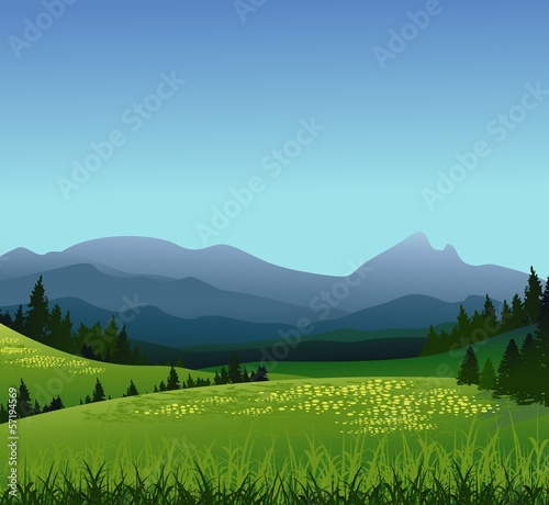 beauty landscape with pine forest and mountain background