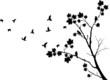 Obrazy na płótnie, fototapety, zdjęcia, fotoobrazy drukowane : autumn tree silhouette with birds flying