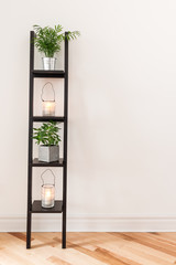 Shelf with plants and lanterns