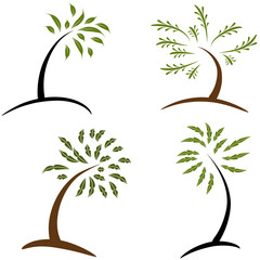 Set of Simple Trees