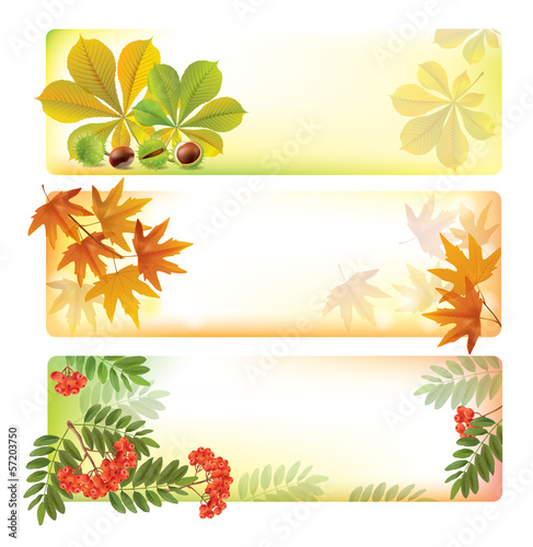 Horizontal autumn banners