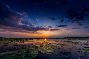 Sunset at Danube Delta