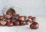 Horse chestnuts or conkers on the table.