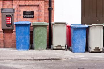 Coloured wheelie bins