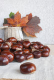 Horse chestnuts or conkers on the table, basket with autumn leav