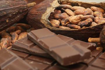 Kakaobohnen mit Tafelschokolade