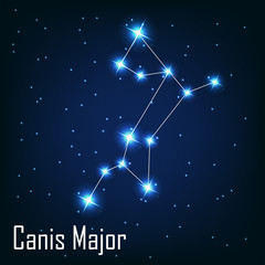 "The constellation "" Canis Major"" star in the night sky. Vector i"