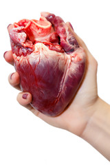 Raw pork heart in a women hand