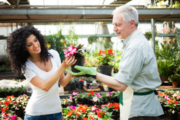 Shop assistant giving a flower pot to a customer