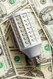 LED lightbulb with american dollars