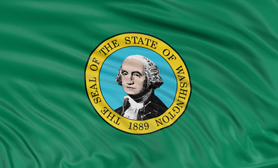 3D Washington  Flag