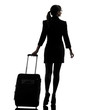 rear view business woman  traveling walking   silhouette