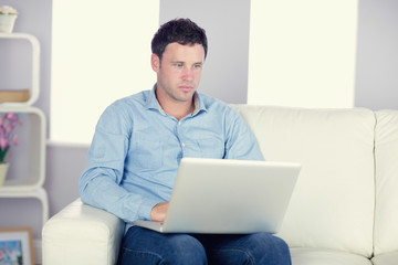 Attractive casual man sitting on couch using laptop