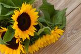 Fototapeta fresh bouquet of yellow sunflowers close up