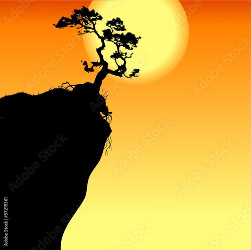 山岩石悬崖插图旅行景观月亮松树树灰色空的美景背景自然载体农村雾风