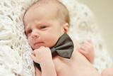 funny newborn gentleman
