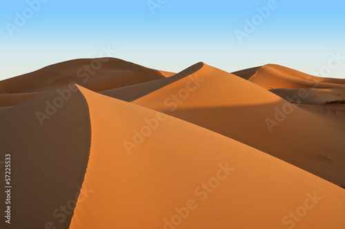 Sand hill in the desert