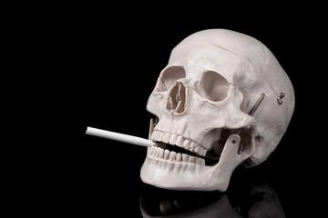 煙草をくわえた頭蓋骨の模型