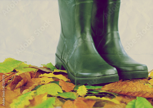boots leaves paper