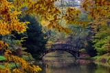 Autumn - Old bridge in autumn misty park - 57231722