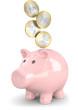 sparschwein münzen von vorne