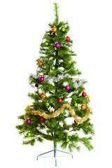 christmas tree isolated.