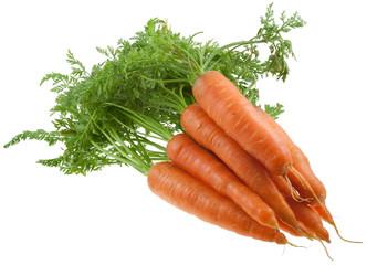 carottes bio avec fanes