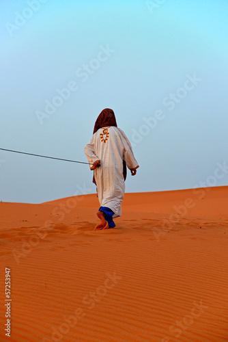 Fototapeten,wildnis,morocco,kamelreiter,einsalben