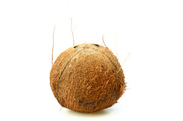 brown hairy of coconut vertical isolated on white background