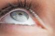 Extreme close up on gorgeous blue eye