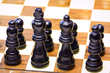 Black chess pieces lined up on the first rank.