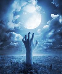 in a moonlight night...