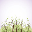 Vector background. Branches with leaves.