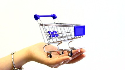 Small shopping cart.