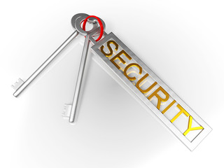 Security Keys Shows Protect Locked And Safe
